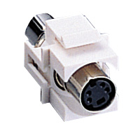 S-Video MiniDIN4 Snap-in Insert - White